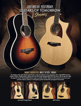 Ibanez- Acoustic AD